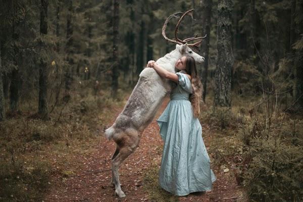 Beautiful photography with wild animals by Russian photographer Katerina Plotnikova