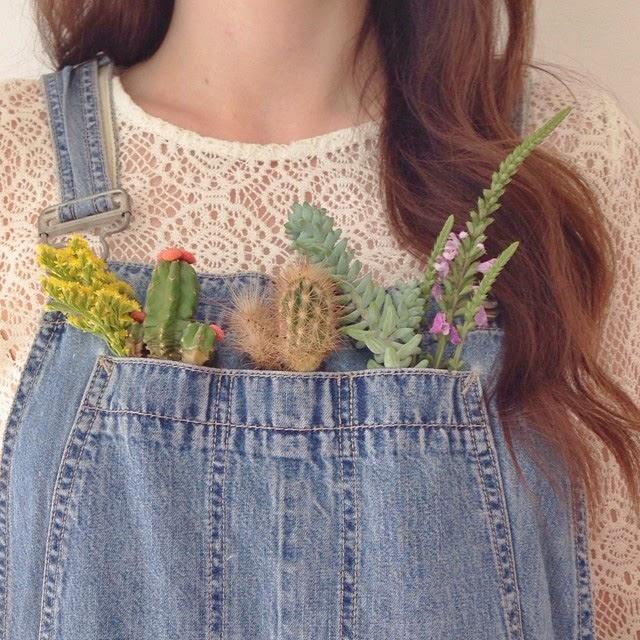 Happiness is... Instagram Inspiration - Clare Nicolson