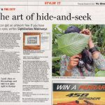 Illustration Exploration feature in The Times