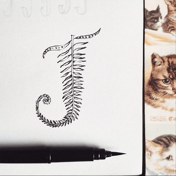 Fancy Feb Letters - a month long Instagram hand lettering project